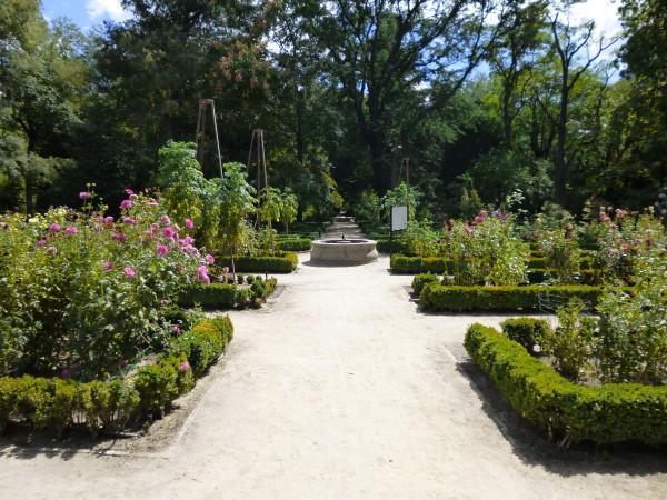 Jardin botanico madrid madridea violeta_de_pereda 1