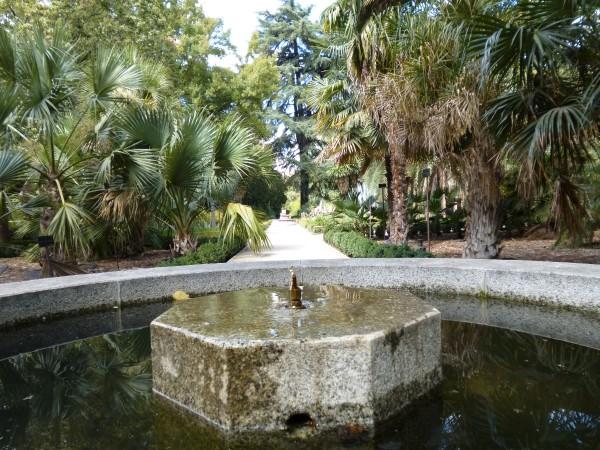 Jardin botanico madrid madridea violeta_de_pereda 4